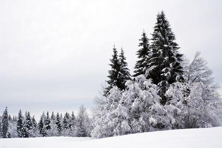 monta�as nevadas: escena de invierno  Foto de archivo