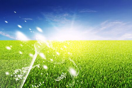 green field with dynamic lines and stars to the sun in back Stock Photo - 6946612
