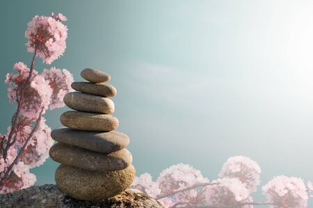 Zen Stones with grassy field and flowers photo