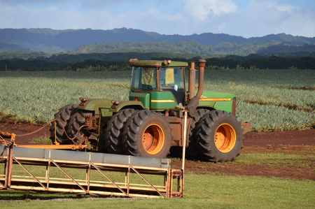 Tractor at Dole Pineapple Factory Publikacyjne