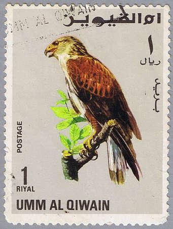 UMM AL QIWAIN � CIRCA 1968: A stamp printed in Umm al Qiwain shows Buteo regalis, series devoted to the birds, circa 1968 photo