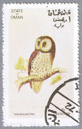 STATE OF OMAN � CIRCA 1972: A stamp printed in State of Oman shows owl, series devoted to the birds, circa 1972 photo