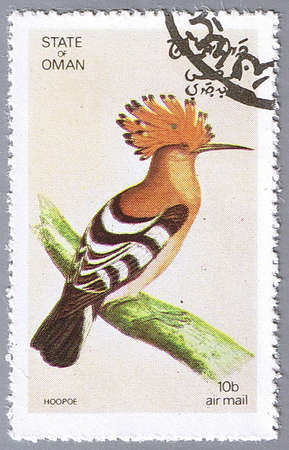STATE OF OMAN � CIRCA 1972: A stamp printed in State of Oman shows hoopoe, series devoted to the birds, circa 1972 photo
