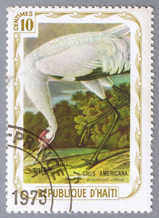 HAITI – CIRCA 1975: A stamp printed in Haiti shows Whooping crane, series devoted to the birds, circa 1975 Stock Photo - 7883858