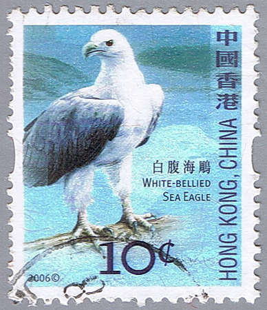 HONG KONG, CHINA - CIRCA 2006: A stamp printed in Hong Kong shows white-bellied sea eagle, series devoted to the birds, circa 2006 Stock Photo