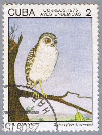 CUBA - CIRCA 1975: A stamp printed in Cuba shows Gymnoglaux lawrenci, series devoted to the birds, circa 1975 photo