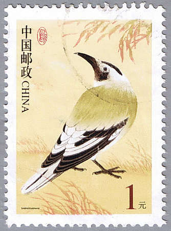 CHINA - CIRCA 2002: A stamp printed in China shows Biddulph�s ground jay, series devoted to the birds, circa 2002 Stock Photo - 7883696