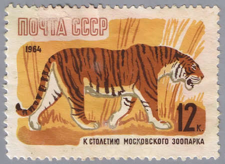 USSR - CIRCA 1964: A stamp printed in USSR shows a tiger, released to the centenary of the Moscow Zoo, series, circa 1964 Stock Photo - 7953398