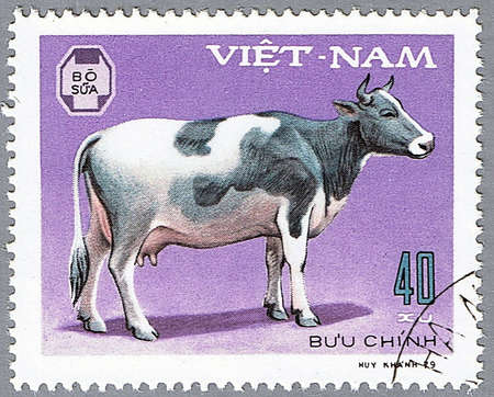 VIETNAM - CIRCA 1979: A stamp printed in Vietnam shows cow, series devoted to pet, circa 1979 Stock Photo - 7953591