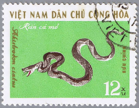 postal office: VIETNAM - CIRCA 1970s: A stamp printed by Vietnam shows snake Akistrodon ciatus, circa 1970s Stock Photo