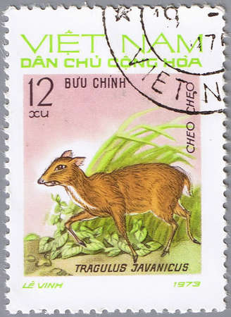 VIETNAM - CIRCA 1973: A stamp printed by Vietnam shows image of a deer Tragulus javanicus, circa 1973 photo