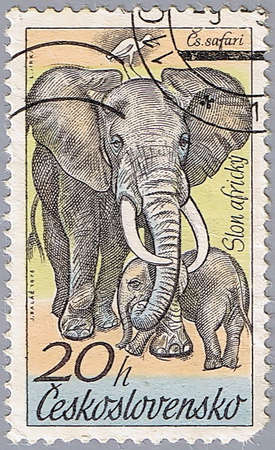 CZECHOSLOVAKIA - CIRCA 1976: A stamp printed in Czechoslovakia shows an elephant, a series of African animals in Dvur Kralove Zoo, circa 1976 Stock Photo - 7953589
