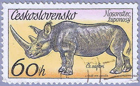 CZECHOSLOVAKIA - CIRCA 1976: A stamp printed in Czechoslovakia shows rhinoceros, a series of African animals in Dvur Kralove Zoo, circa 1976 Stock Photo - 7953574