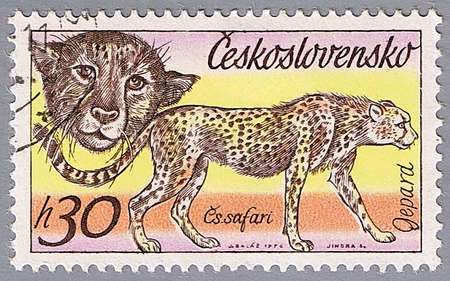 CZECHOSLOVAKIA - CIRCA 1976: A stamp printed in Czechoslovakia shows cheetah, a series of African animals in Dvur Kralove Zoo, circa 1976 photo