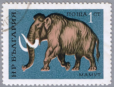 mammoth: BULGARIA - CIRCA 1971: A stamp printed in Bulgaria shows mammoth, series, circa 1971