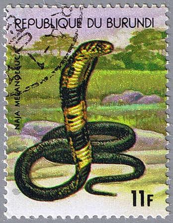 REPUBLIC OF BURUNDI - CIRCA 1977: A stamp printed in Republic of Burundi shows black cobra, series, circa 1977 photo