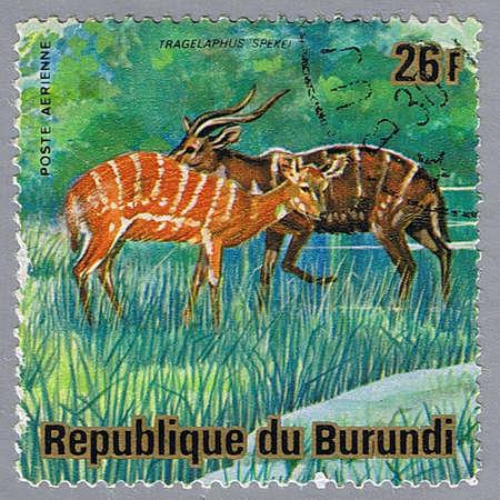 REPUBLIC OF BURUNDI - CIRCA 1975: A stamp printed in Republic of Burundi shows sitatungas, series, circa 1975 photo