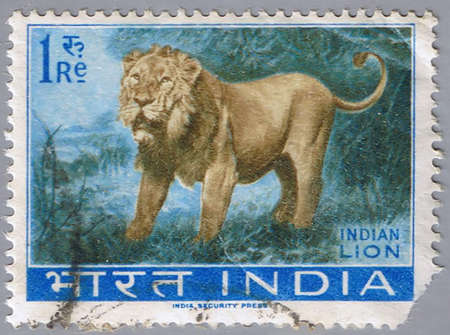 indian postal stamp: INDIA - CIRCA 1963: A stamp printed in India shows an Indian lion, series, circa 1963 Stock Photo