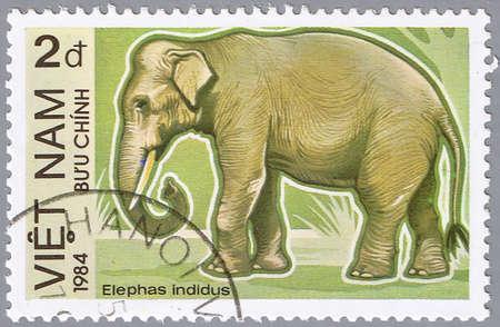 VIETNAN - CIRCA 1984: Un sello imprimido en Vietnam muestra elefante, serie, alrededor del año 1984