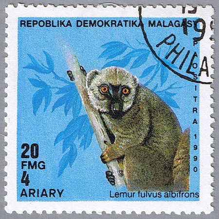 MALAGASY REPUBLIC - CIRCA 1990: A stamp printed in Malagasy republic shows Lemur fulvus albifrons, series, circa 1990