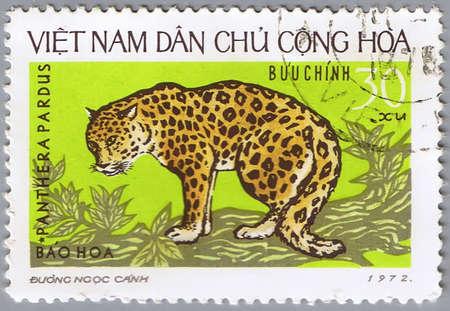 VIETNAM - CIRCA 1972: A stamp printed in Vietnam shows a leopard, circa 1972 photo