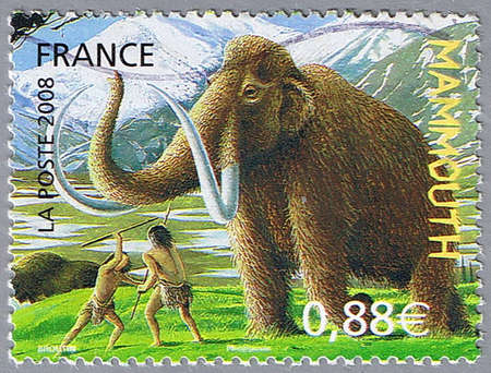 FRANCE - CIRCA 2008: A stamp printed in France shows mammoth, circa 2008 Stock Photo - 7953541