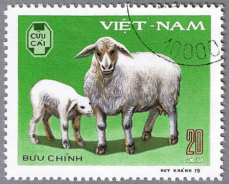 VIETNAM - CIRCA 1979: A stamp printed in Vietnam shows a sheep and lamb, series devoted to pet, circa 1979 photo