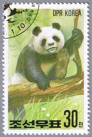 DPRK - CIRCA 1991: A stamp printed in DPRK shows panda, series, circa 1991 Stock Photo - 7953577