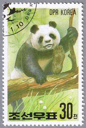 DPRK - CIRCA 1991: A stamp printed in DPRK shows panda, series, circa 1991 Stock Photo - 7953577