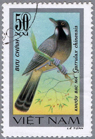 laughingthrush: VIETNAM - CIRCA 1978: A stamp printed in Vietnam shows Garrulax chinensis or black-throated laughingthrush, series devoted to the songbirds, circa 1978 Stock Photo