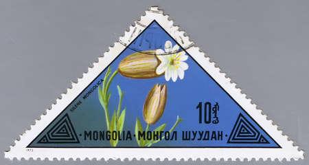 MONGOLIA - CIRCA 1973: A stamp printed in Mongolia shows a flower, series, circa 1973 photo