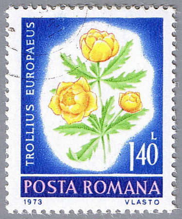 philatelic: ROMANIA – CIRCA 1973: A stamp printed in Romania shows Trollius europaeus, series, circa 1973