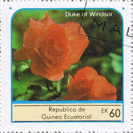 EQUATORIAL GUINEA - CIRCA 1976: A stamp printed in Equatorial Guinea shows rose, series, circa 1976 photo