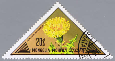 philatelic: MONGOLIA - CIRCA 1973: A stamp printed in Mongolia shows a flower, series, circa 1973