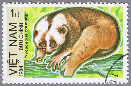 VIETNAM - CIRCA 1984: A stamp printed in Vietnam shows Nycticebus coucang or sunda slow loris, series is devoted to animals endangered, circa 1984