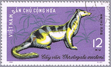 VIETNAM - CIRCA 1965: A stamp printed in Vietnam shows Owstons Palm Civet or Chrotogale owstoni, series is devoted to wild animals, circa 1965 photo