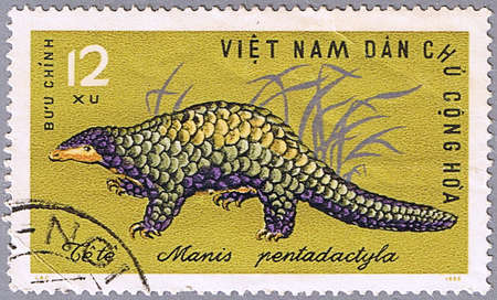 VIETNAM - CIRCA 1965: A stamp printed in Vietnam shows Chinese Pangolin or Manis pentadactyla, series is devoted to wild animals, circa 1965 photo