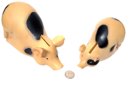 Two pigs have found a coin Stock Photo - 10588041