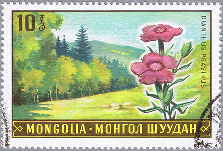 pinks: MONGOLIA - CIRCA 1969: A stamp printed in Mongolia shows Pinks, series, circa 1969