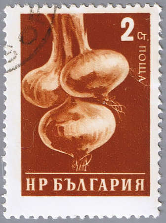 BULGARIA - CIRCA 1958: A stamp printed in Bulgaria shows onion, a series devoted to vegetables, circa 1958 photo