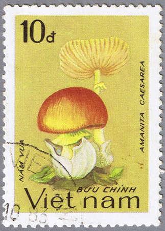 VIETNAM - CIRCA 1983: A stamp printed in Vietnam shows Amanita caesarea, series, circa 1983 photo