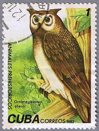 CUBA - CIRCA 1982: A stamp printed in Cuba shows Cuban Giant Owl, series devoted to prehistoric animals, circa 1982 photo