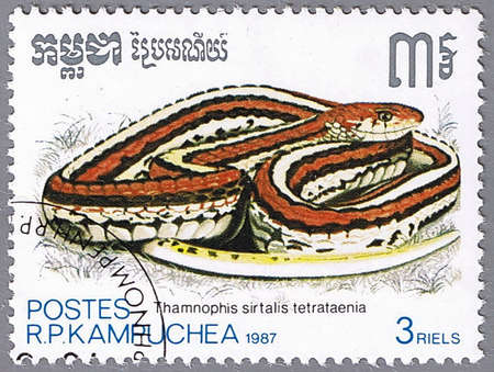 KAMPUCHEA - CIRCA 1987: A stamp printed in Kampuchea shows San Francisco garter snake, series is devoted to reptiles, circa 1987 photo