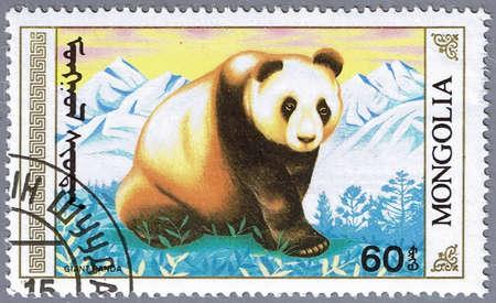 MONGOLIA - CIRCA 1990: A stamp printed in Mongolia shows an adult giant panda, series, circa 1990 Stock Photo