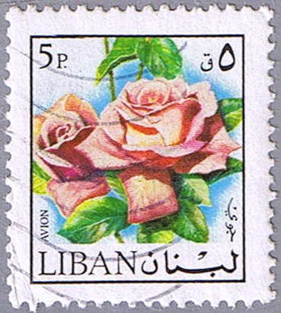 LEBANON - CIRCA 1972: A stamp printed in Lebanon shows rose, series, circa 1972 Stock Photo - 10691171