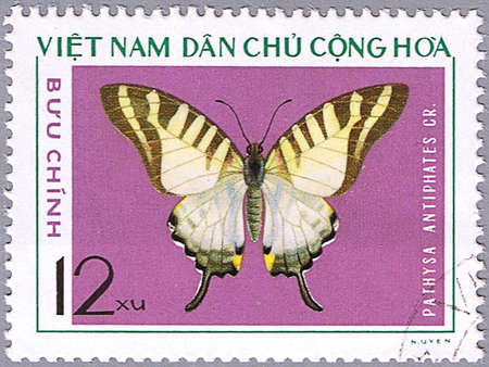 VIETNAM - CIRCA 1976: A stamp printed in Vietnam shows Pathysa antiphates, series devoted to butterflies, circa 1976 Stock Photo