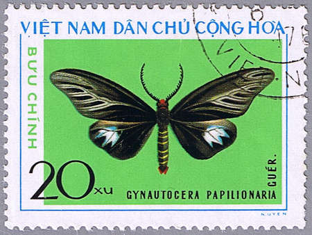 VIETNAM - CIRCA 1976: A stamp printed in Vietnam shows Gynautocera papilionaria, series devoted to butterflies, circa 1976 photo