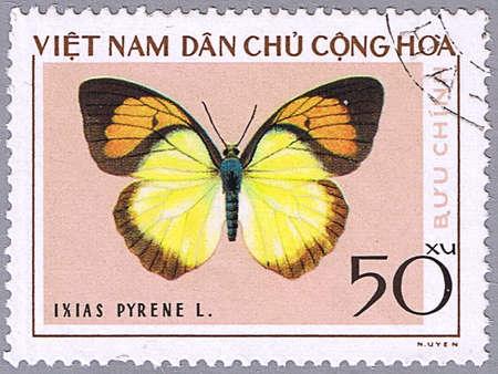 VIETNAM - CIRCA 1976: A stamp printed in Vietnam shows Ixias pyrene, series devoted to butterflies, circa 1976 photo