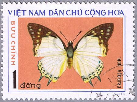 VIETNAM - CIRCA 1976: A stamp printed in Vietnam shows Eriboea, series devoted to butterflies, circa 1976 photo