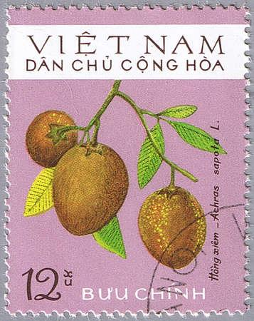 VIETNAM - CIRCA 1975: A stamp printed in Vietnam shows Achras sapota or Sapodilla, series, circa 1975 Stock Photo - 12256294